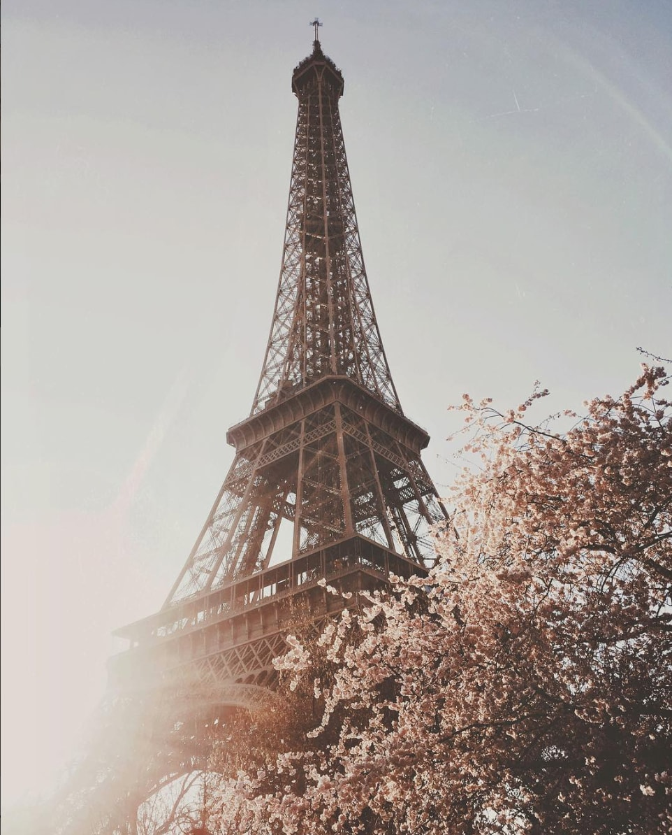 paris by sarahloven