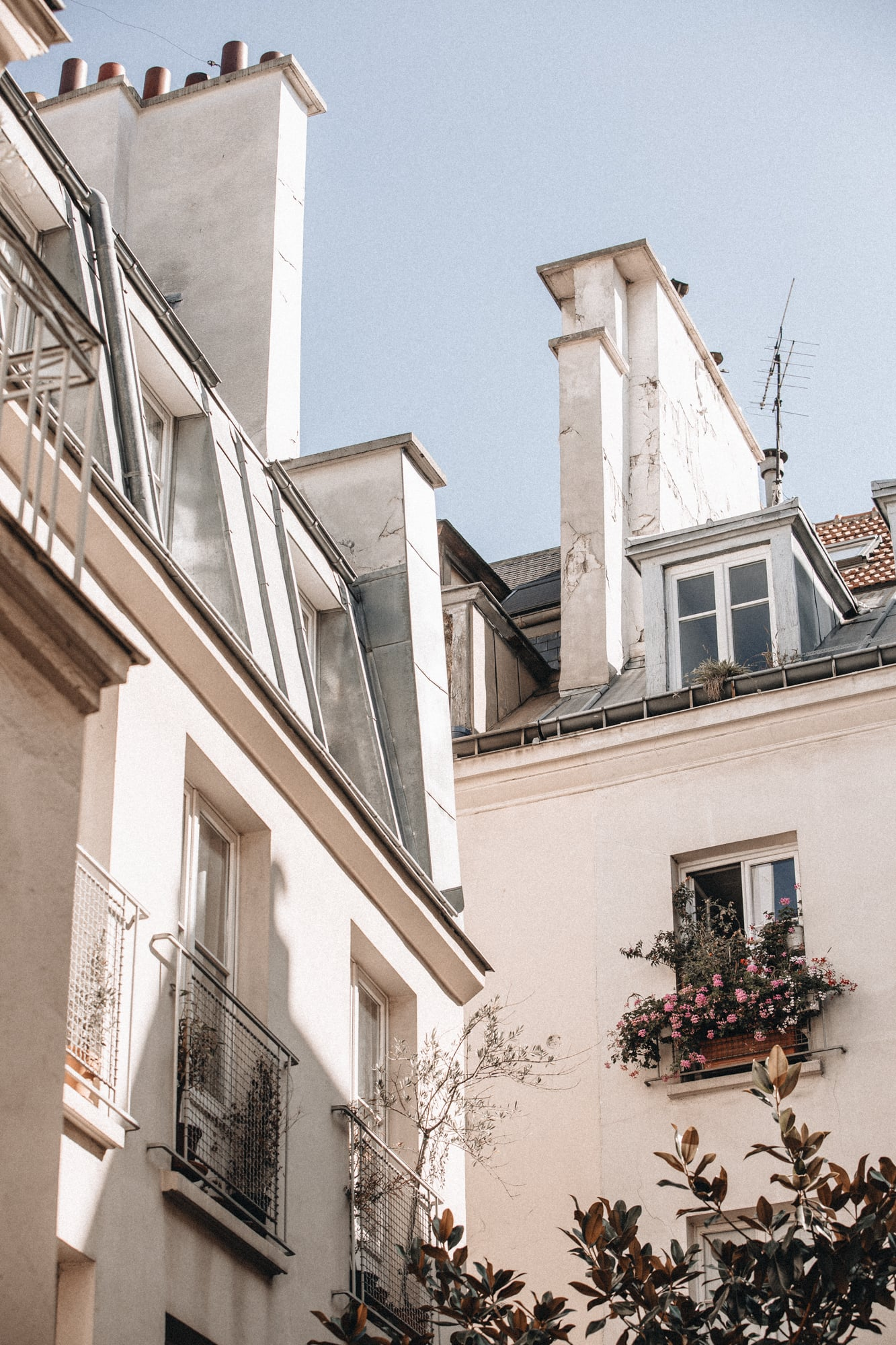 rooftops in paris