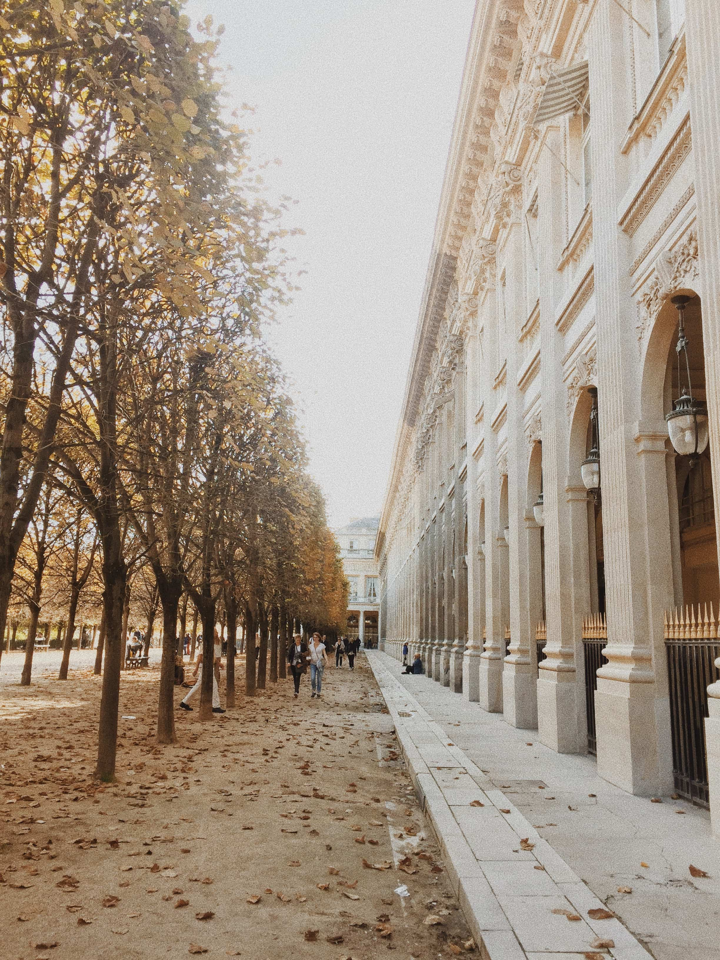 Palais Royal path between trees