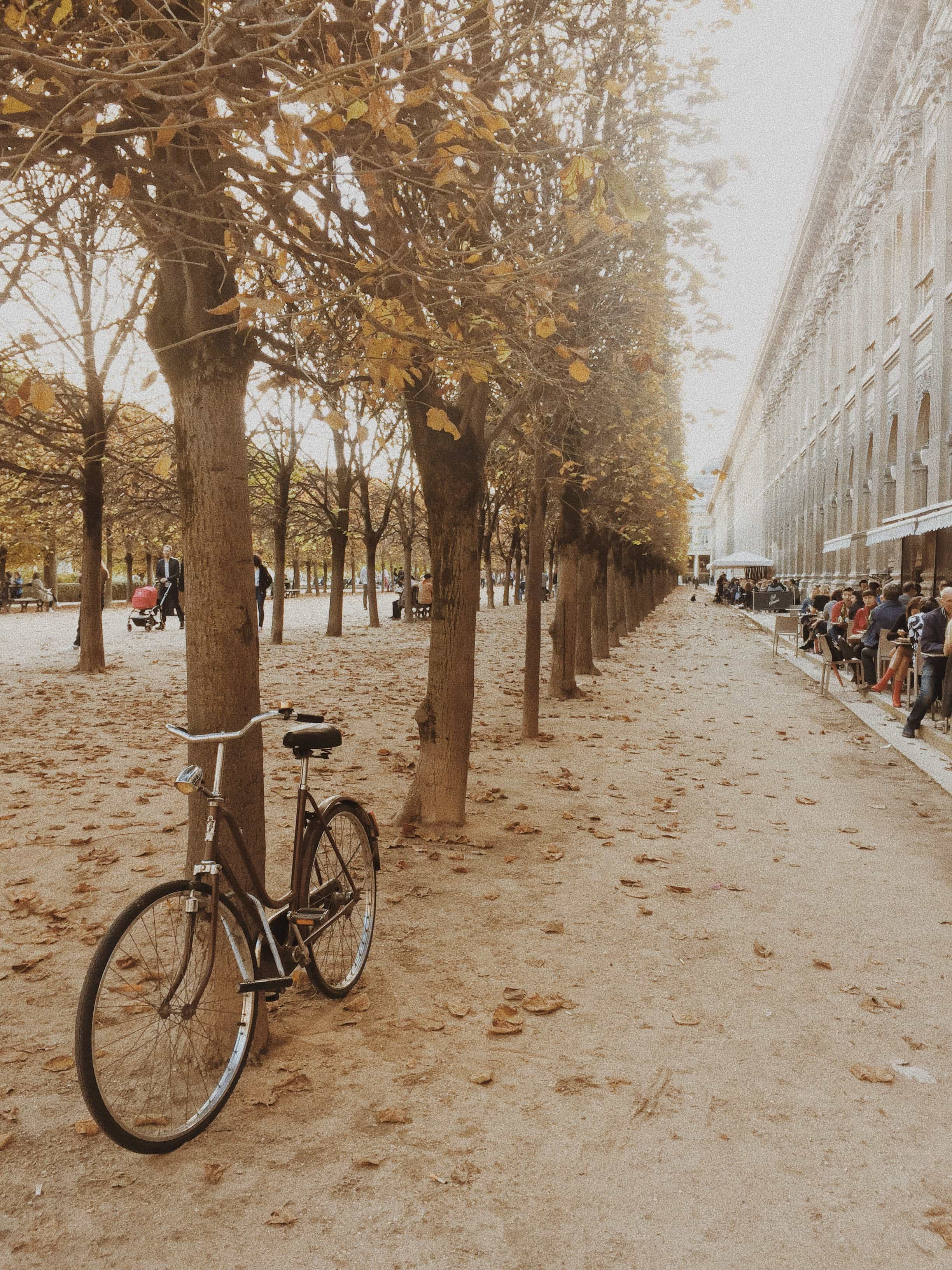 bicycle at Palais Royal gardens